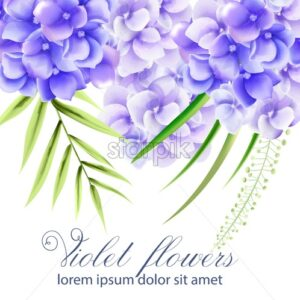 Watercolor vibrant violet flowers with green leaves. Spring vector - Starpik Stock