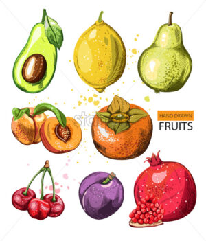 Composition with watercolor hand drawn fruits. Pomegranate, avocado, quince, pears, peaches, cherry, pomegranate. Vector - Starpik Stock