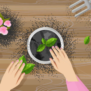 Gardening concept with woman hands, shovel and rake. Tea leaves and pink flowers growing in a pot. Wooden background. Vector - Starpik Stock