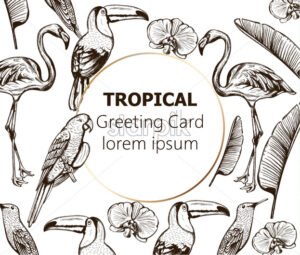 Line art composition of tropical animals and leaves. Flamingo, tucano bird, parrot and swallow. Place for text. Vector - Starpik Stock