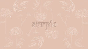 Line art peonies flowers on beige background. Vector - Starpik Stock