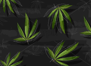 Marijuana leaves in line art style on black structured background. Vector - Starpik Stock