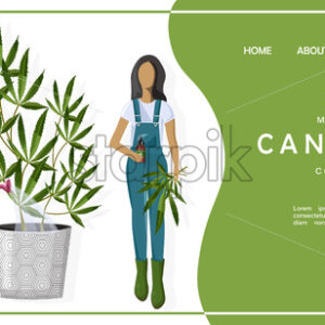Medical cannabis concept site template with couple of farmers growing marijuana leaves in a pot. Vector - Starpik Stock