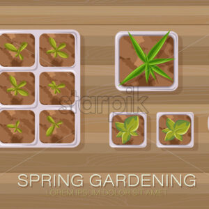 Spring gardening pot with flowers and tea leaves growing. Wooden background. Vector - Starpik Stock