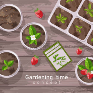 Spring gardening pot with strawberries, flowers and tea leaves growing. Wooden background. Vector - Starpik Stock