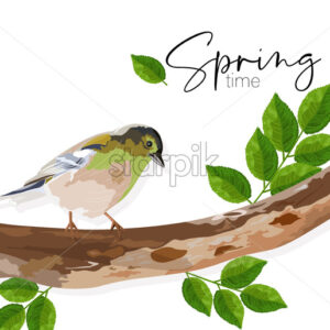 Spring time swallow bird sitting on a tree branch with green leaves. Vector - Starpik Stock