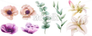 Watercolor set of lily and peony flowers with green leaves. Vector - Starpik Stock