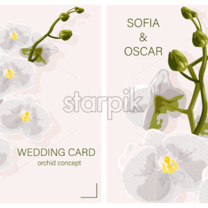 Wedding card with White Orchid Flowers concept and place for text. Vector - Starpik Stock