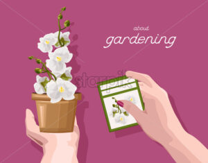 Woman holding with hands a sign with orchid flower description. About gardening idea. Vector - Starpik Stock