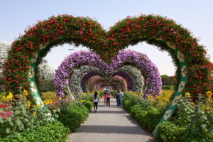 DUBAI, UNITED ARAB EMIRATES – FEBRUARY 23, 2019: Colorful Heart shaped flowers in Miracle Garden. Tourists walking - Starpik Stock