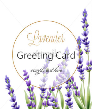Greeting card with lavender flowers and place for text. Vector - Starpik Stock