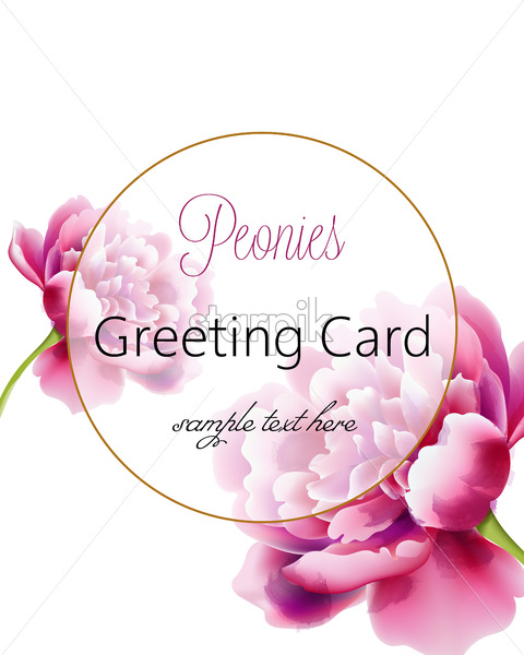 Greeting card with pink peonies flowers and place for text. Watercolor. Vector - Starpik Stock