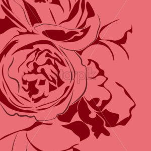 Illustration of two red peony flowers on pink background. Vector - Starpik Stock