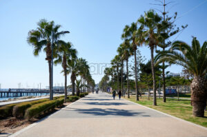 LIMASSOL, CYPRUS – FEBRUARY 17, 2020: Embankment street with walking people and rows of palms growing along - Starpik Stock