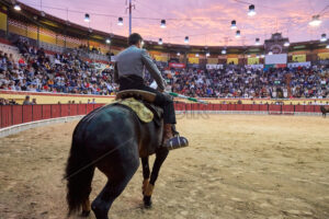 LISBON, PORTUGAL – OCTOBER 28 2019: Close shot of the bullfighter on the black horse with a spear in his hands, people behind are watching attentively. Location is arena Palho Blanco - Starpik Stock