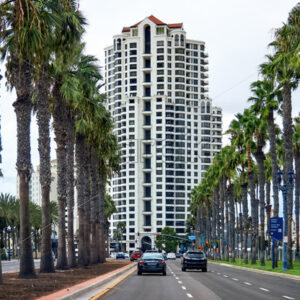 Road with full of palm trees and a building in the background in San Diego - Starpik Stock