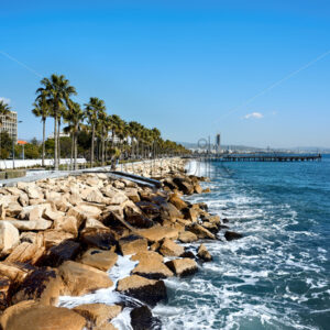 Stony coastline of Mediteranean sea and rows of palms growing near it in Limassol, Cyprus - Starpik Stock