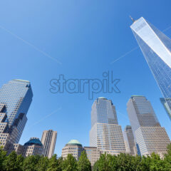 Wide shot of the World Trade Center in New York with lots of high and modern buildings near it and green trees in the foreground, the sky behind the main scene is blue and clear - Starpik Stock