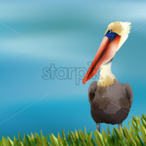 Colorful pelican sitting in grass on ocean background. Vector - Starpik Stock