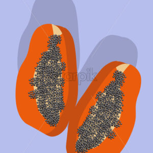 Composition of two slices of papaya fruit on purple background. Vector - Starpik Stock