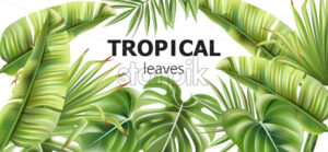 Green tropical leaves banner with place for text. Various flowers. Vector - Starpik Stock