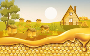 Honeycombs covered in dripping honey with a field full of beehives surrounded by flowers in background. Vector - Starpik Stock