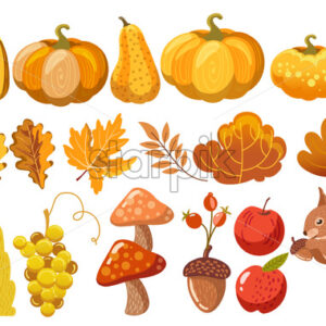 Set of pumpkins, leaves, bushes, mushrooms, acorn, grapes, apples and a squirrel. Autumn thematics. Vector - Starpik Stock