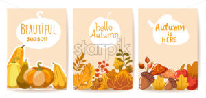 Set of three autumn cards. Pumpkins, leaves and twigs, acorns, apples and mushrooms. Place for text. Vector - Starpik Stock