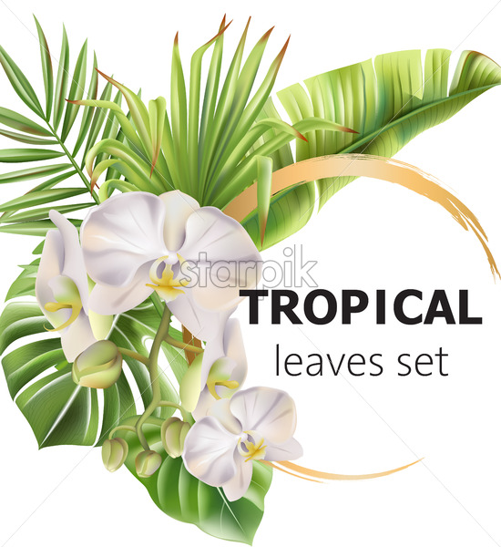Tropical leaves greeting card with flowers and place for text. Vector - Starpik Stock
