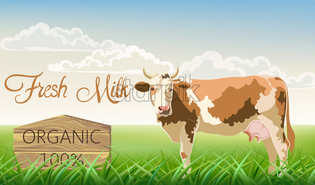 A cow with brown spots looking at the camera with a meadow in background. Organic fresh milk. 3D mockup product placement. Vector - Starpik Stock