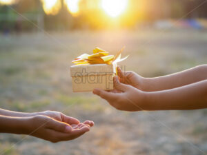A kid is giving a boy a gift box with golden tape, setting sun. Holiday concept - Starpik Stock