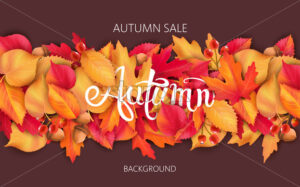 Abstract background with leaves, acorns and berries. Autumnal sale. Vector - Starpik Stock