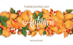 Abstract background with leaves, acorns and berries. Autumnal thematics. Thanksgiving day. Vector - Starpik Stock