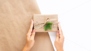 Female hand holds a gift box with a Christmas tree branch on two-color background. Holiday concept. Front view - Starpik Stock