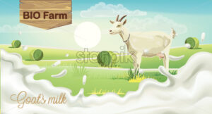 Goat on meadow with hay bales. Splashing bio farm milk. Realistic. 3D mockup product placement. Vector - Starpik Stock