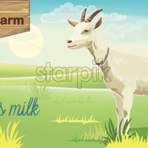 Goat on meadow with sunrise in background. Bio farm milk. Realistic. 3D mockup product placement. Vector - Starpik Stock