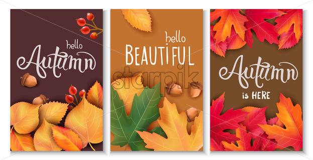 Set of three cards with leaves, acorns and berries. Autumnal thematics. Beautiful season. Vector - Starpik Stock