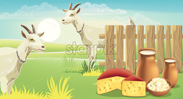 Two goats and meadow near a fence with cheese, cottage cheese and milk on the grass. Realistic. 3D mockup product placement. Vector - Starpik Stock