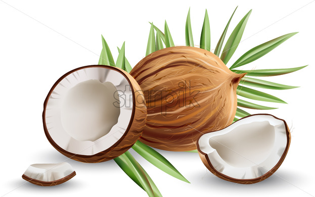 Whole and cracked open coconuts with monstera leaves. Realistic. 3D mockup product placement. Vector - Starpik Stock