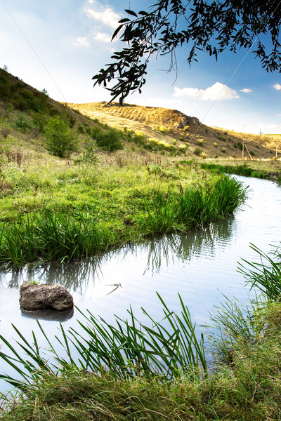Nature of Moldova, vale with flowing river, reed, high grass and bushes along it, hills on the background, a rock lying in the water - Starpik Stock