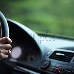 VIDEO – Woman hands on a car wheel driving on a forest road, slow motion video - Starpik Stock