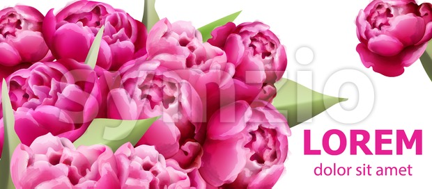 Peony flowers bouquet card background Vector. Beautiful spring template
