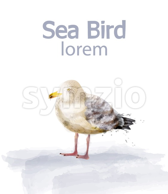 Seabird vector watercolor. cute bird isolated on white Stock Vector