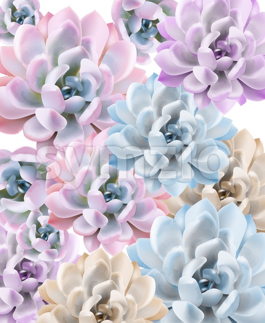 Watercolor Succulent plant pattern Vector. Hand painted vintage gardening background. floral texture background