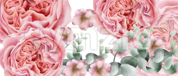 Peony flowers card Vector watercolor. colorful seasonal decor background Stock Vector