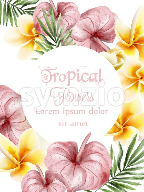 Anthurium and plumeria tropic flowers Vector watercolor card. Summer time paradise card. Wedding ceremony invitation. Exotic festival background Stock Vector