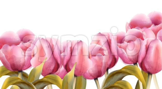 watercolor tulips Vector. Vintage exotic floral banner summer time festival Stock Vector