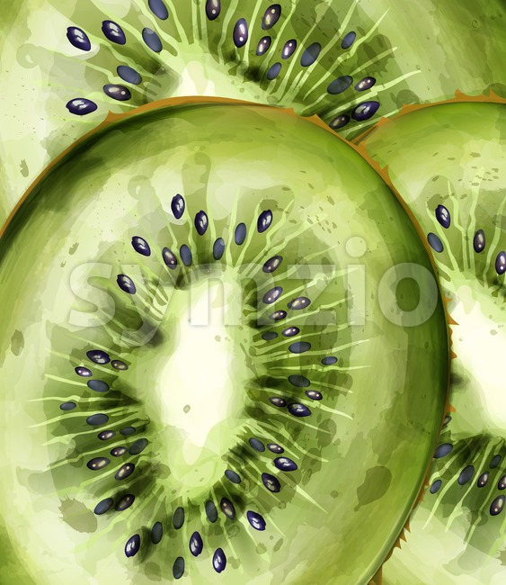 Kiwi pattern close up Vector watercolor. Summer fresh texture background
