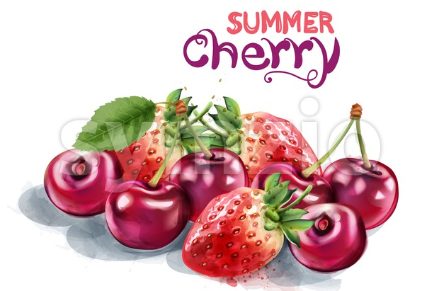 Strawberry and cherry Vector watercolor. Summer season card Stock Vector