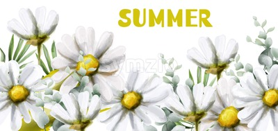 Chamomile summer background Vector watercolor. Vintage flowers white colors. Delicate frame decor Stock Vector